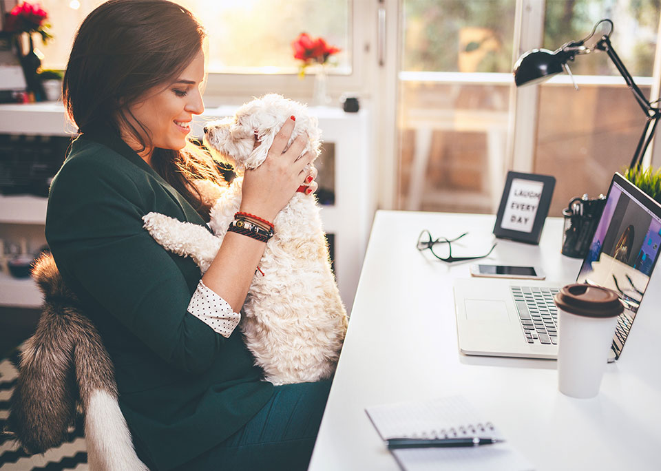 woman at desk with dog on lap