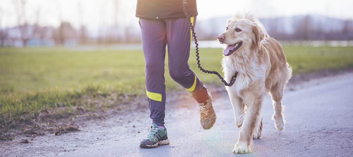 Running is better with a friend