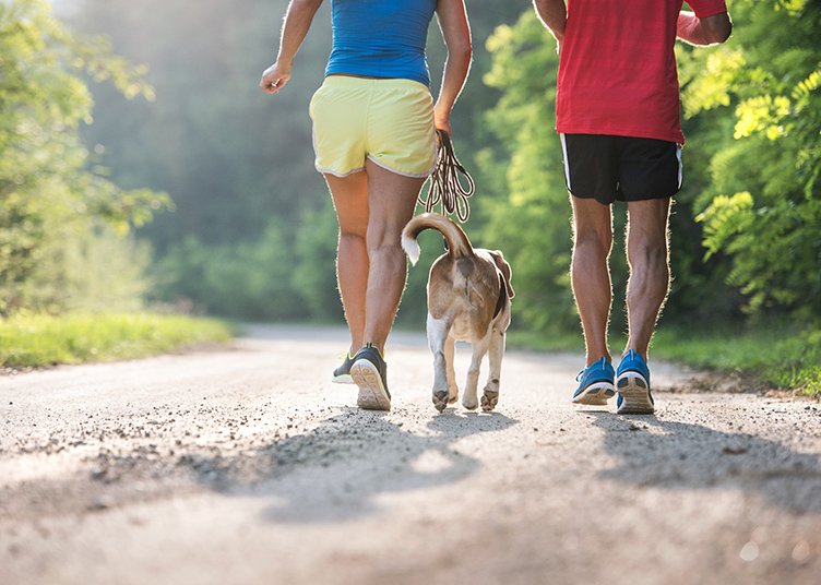 Unrecognizable senior couple running with their dog outside in green nature. Rear view.
