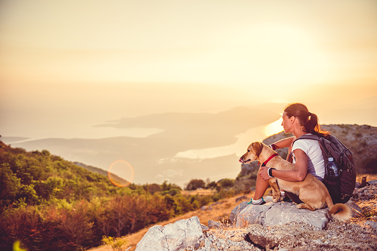 hiking_with_your_dog