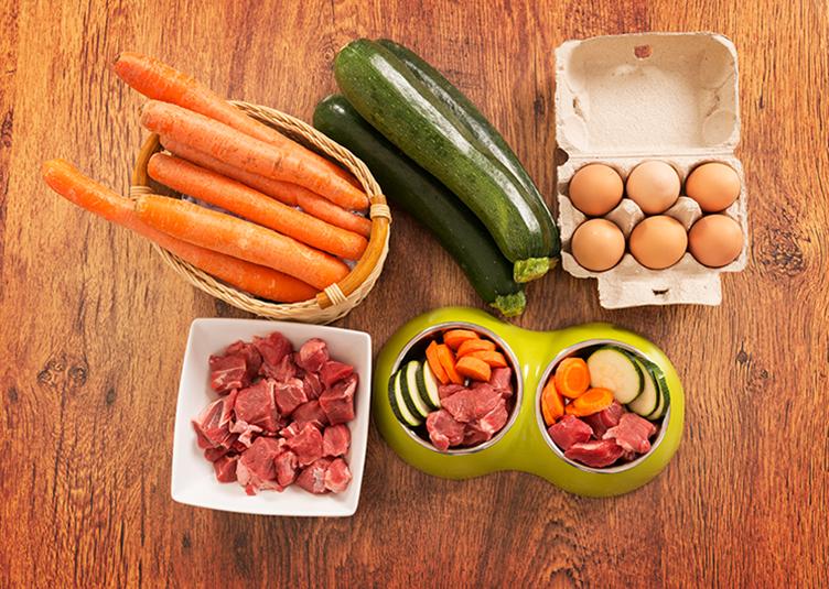 natural dog food diet